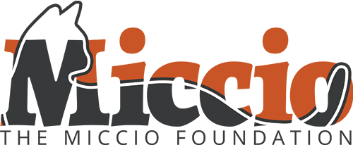 The Miccio Foundation